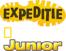 logo_NG_Junior_festival